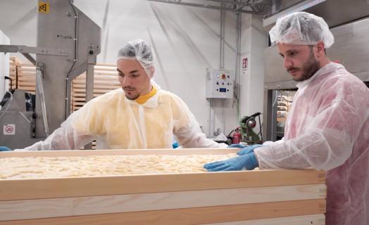 Dried durum wheat pasta
