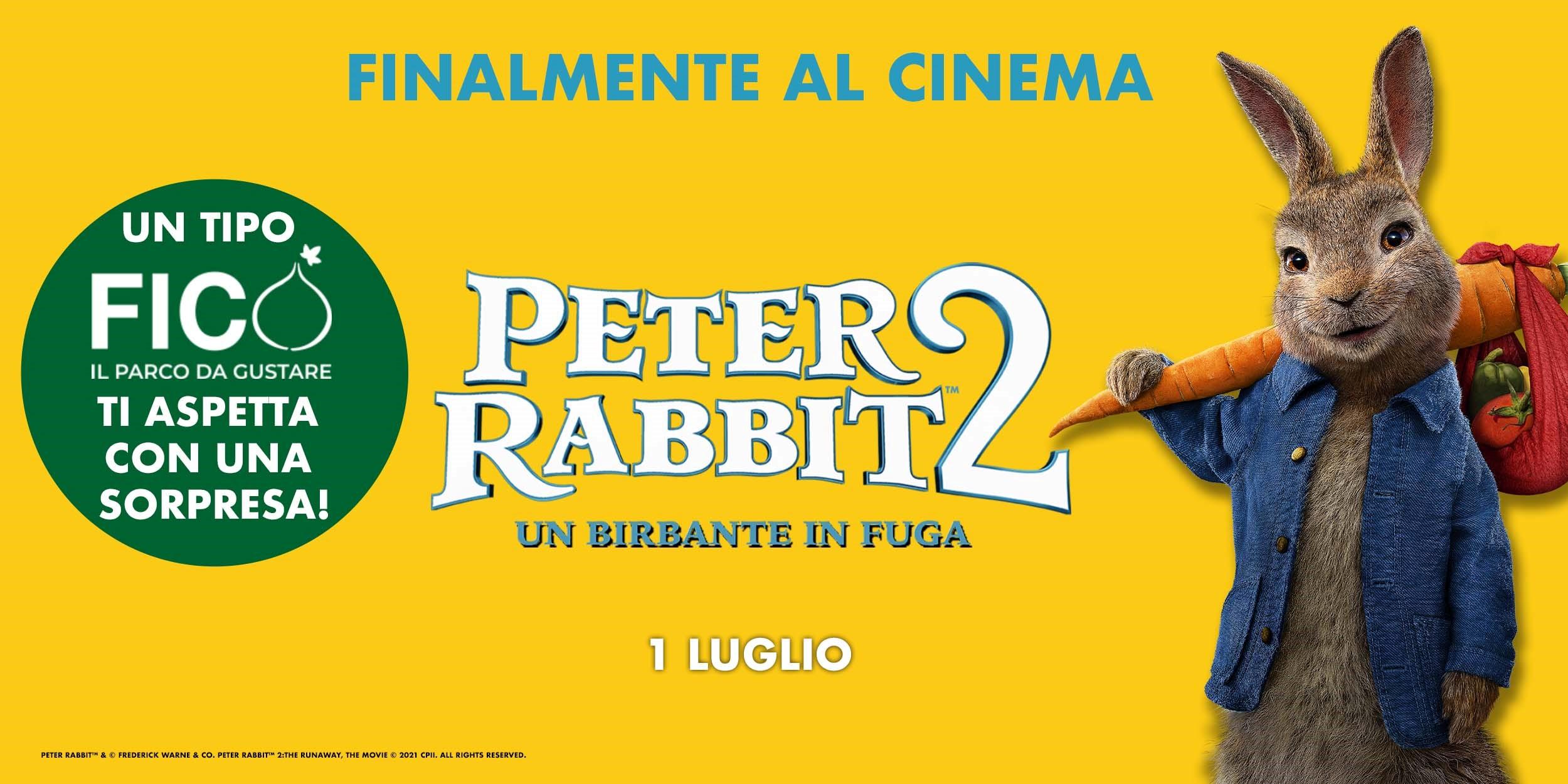Evento Coniglio Peter Rabbit