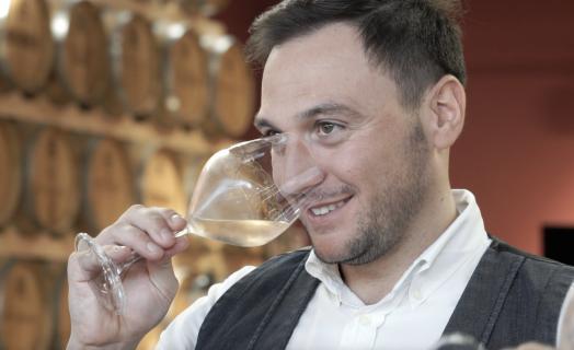 Dalla vigna al vino